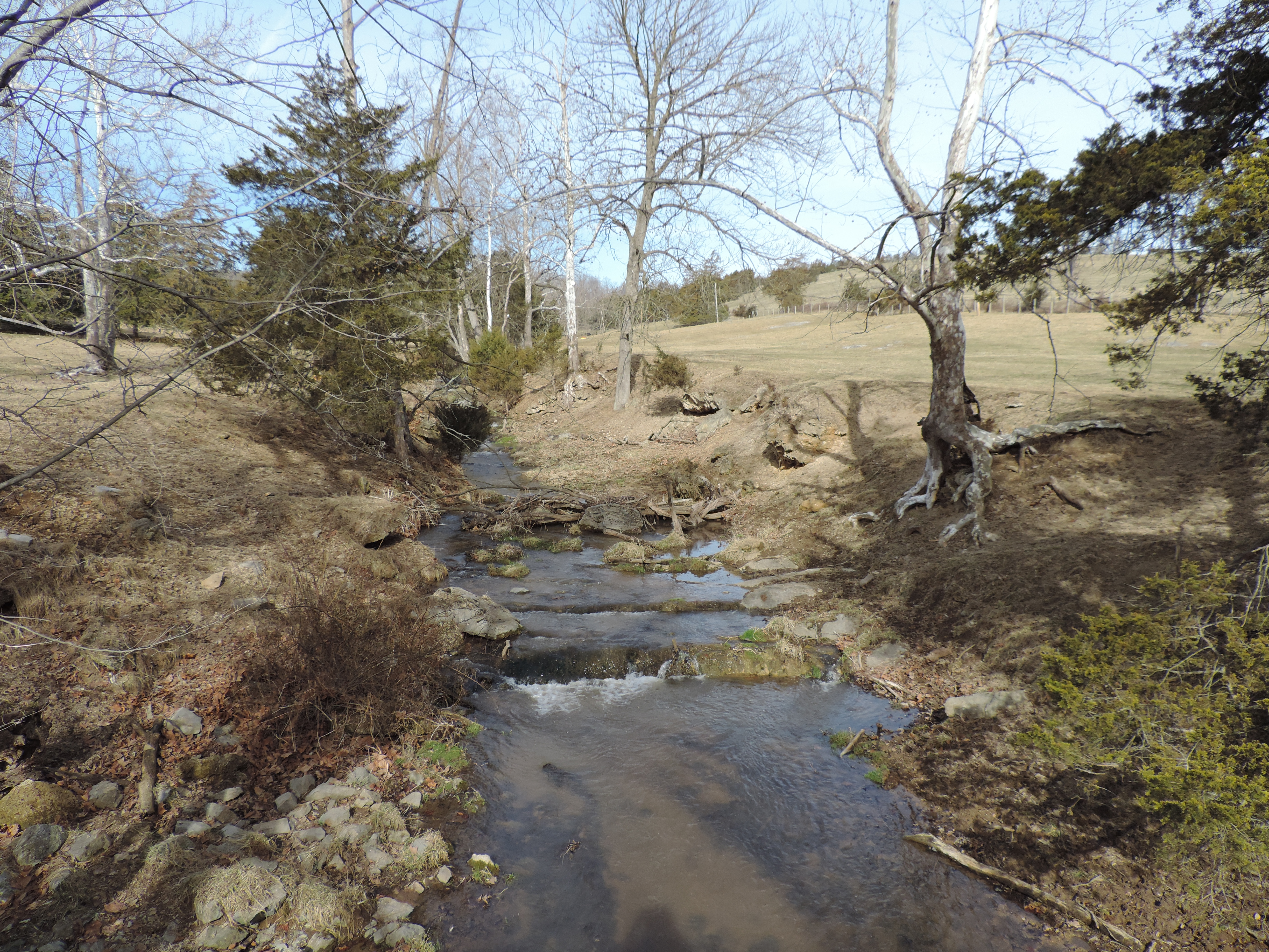 Linville Creek Tmdl And Septic Assistance Program Svswcd